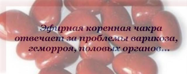 Эфирная Коренная Чакра