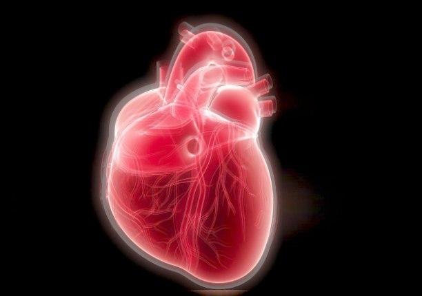 эфирное тело сердца