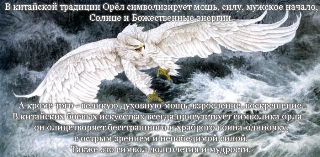 символ орел значение