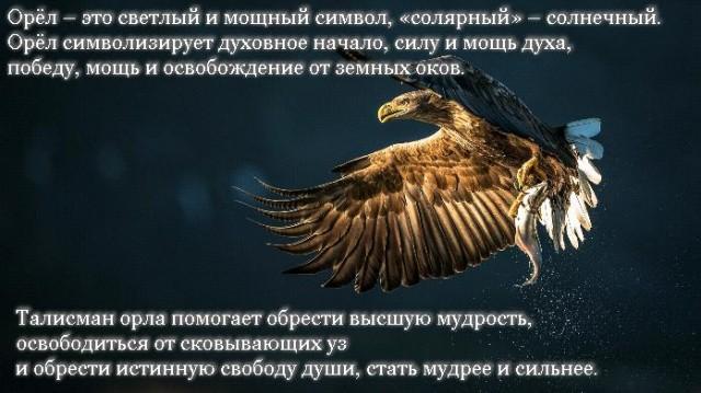 символ орла значение