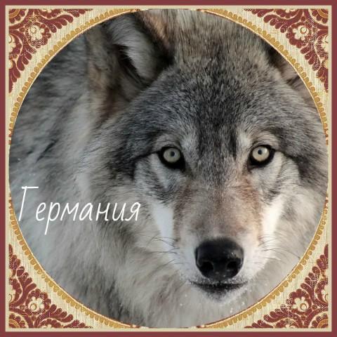 Волк Хранитель Германии