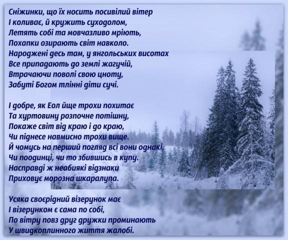 Снежинки Иван Злотников